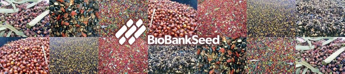 BioBank Seed Wholesale Order Native Seed